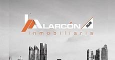 Alarcon Sur