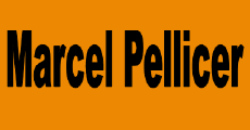 Marcel Pellicer