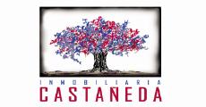 Inmobiliaria Casta�eda