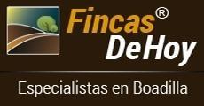 Fincas De Hoy